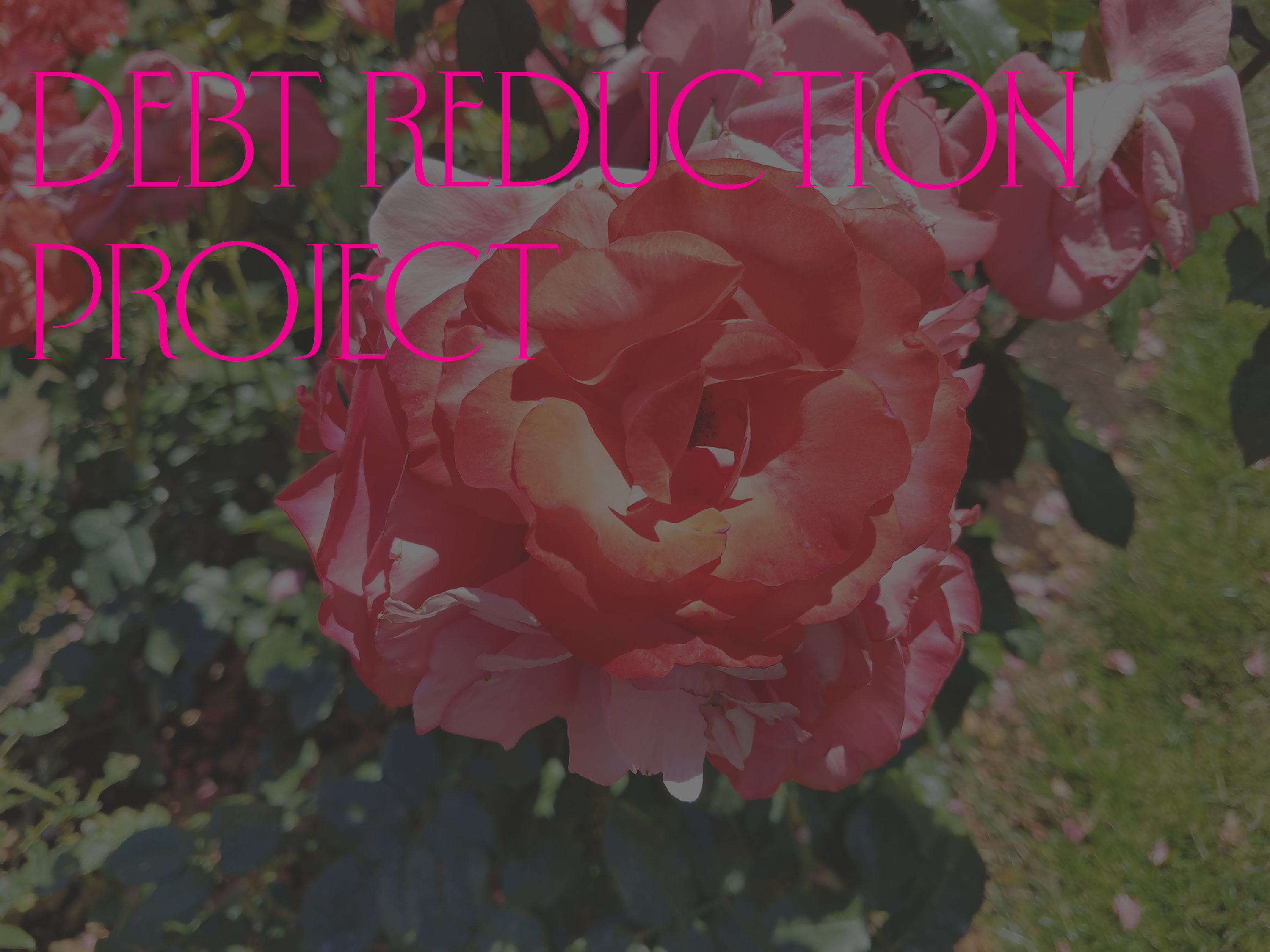 Debt Reduction Project