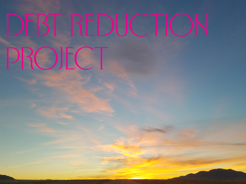 Debt Reduction Progress v5